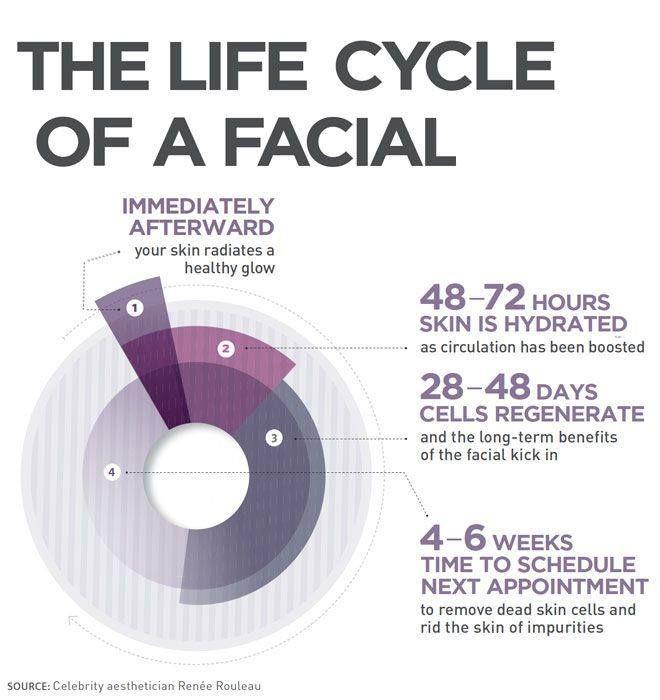 facial-infographic