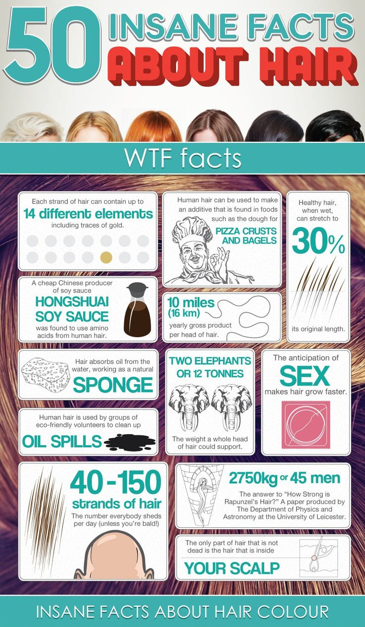 hair-salon-infographic