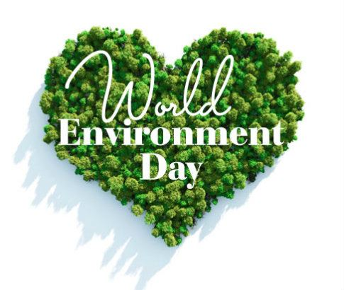 world-environment-day-salon